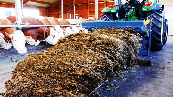 The serrated knife guarantees that the bale will be cut all the way through.