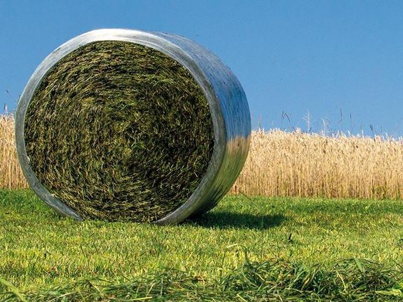 Clean feed and the proper cutting length are only two of many factors that have an impact on silage quality.