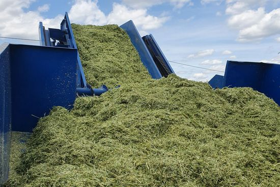 The LT-Master makes it possible to process chopped WCS into round bales.